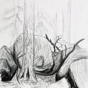 Heidrun Wettengl: Hedmark 3/13, Bleistift auf Papier, 29,7x21 cm, 2015. Alle Rechte vorbehalten.