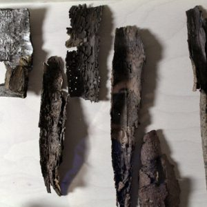 Heidrun Wettengl: Holz 3.0 (Detail 1), Wandinstallation, Holzobjekte, Objektkästen jeweils 52x52 cm, 2014. Alle Rechte vorbehalten.