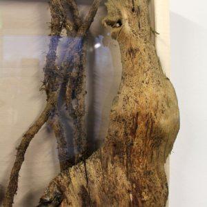 Heidrun Wettengl: Holz 3.0 (Detail 6), Wandinstallation, Holzobjekte, Objektkästen jeweils 52x52 cm, 2014. Alle Rechte vorbehalten.
