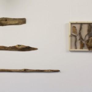 Heidrun Wettengl: Holz 3.0 - Gruppe II, Wandinstallation, Holzobjekte, Objektkästen jeweils 52x52 cm, 2014. Alle Rechte vorbehalten.