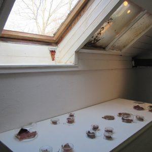 Heidrun Wettengl: Im Fokus (Tagesansicht), Installation, welke Weinblätter, Gläser, 2013. Alle Rechte vorbehalten.