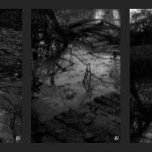 Heidrun Wettengl: November 1-3, Pinhole-Serie, jeweils 21x14 cm, 2013. Alle Rechte vorbehalten.