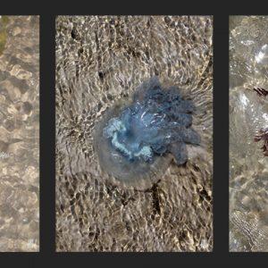 Heidrun Wettengl: Waterkant-1-3, Fotoserie, jeweils 21x14 cm, 2013. Alle Rechte vorbehalten.