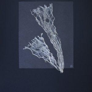 Heidrun Wettengl: Inside 4/10, Kozofaser auf Papier, 100x70 cm, 2016. Alle Rechte vorbehalten.