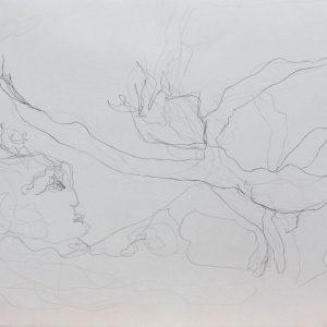 Heidrun Wettengl: Paarung 02, Bleistift auf Papier, 29,7x42 cm, 2013. Alle Rechte vorbehalten.