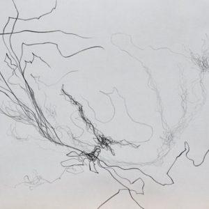 Heidrun Wettengl: Paarung 05, Bleistift auf Papier, 29,7x42 cm, 2013. Alle Rechte vorbehalten.