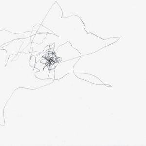 Heidrun Wettengl: Paarung 07, Bleistift auf Papier, 21x29,7 cm, 2013. Alle Rechte vorbehalten.