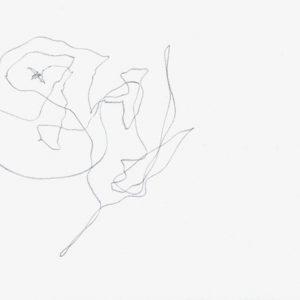 Heidrun Wettengl: Paarung 08, Bleistift auf Papier, 21x29,7 cm, 2013. Alle Rechte vorbehalten.