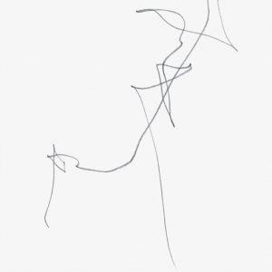 Heidrun Wettengl: Paarung 13, Bleistift auf Papier, 29,7x21 cm, 2013. Alle Rechte vorbehalten.