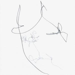 Heidrun Wettengl: Paarung 17, Bleistift auf Papier, 29,7x21 cm, 2013. Alle Rechte vorbehalten.