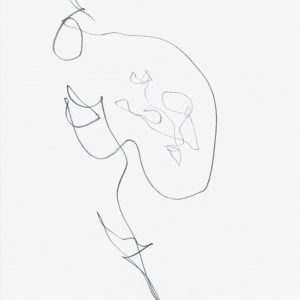 Heidrun Wettengl: Paarung 18, Bleistift auf Papier, 29,7x21 cm, 2013. Alle Rechte vorbehalten.